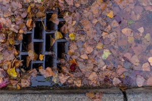 Leaves can block storm drains, leading to flooded streets.